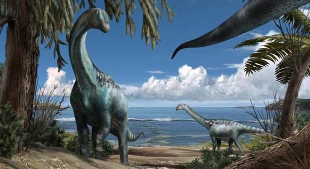 Nuovo dinosauro italiano Tito, gigante taglia 'extra small'